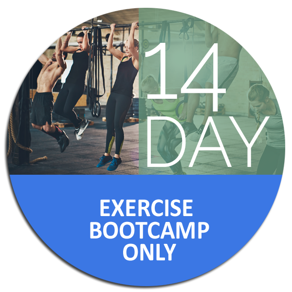 14 day Exercise Bootcamp Only